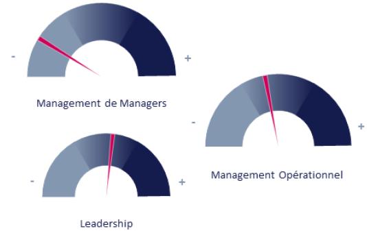 évaluation de compétences en management